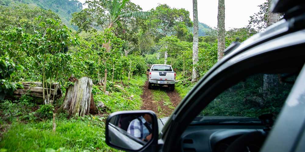 Climbing the dirt road up to the top of Finca Monte Verde in El Salvador.