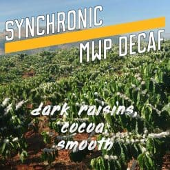 synchronic decaf coffee