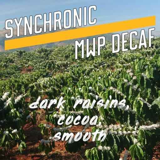 synchronic decaf coffee